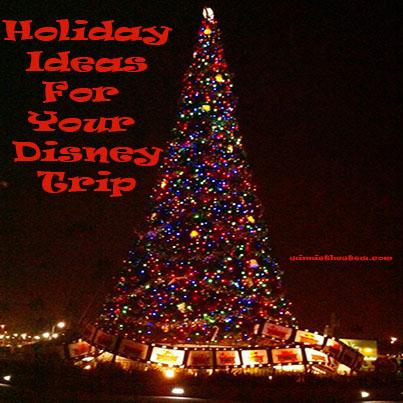 Tree outside Hollywood Studios.